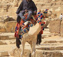 Camel Ride by maureenclark