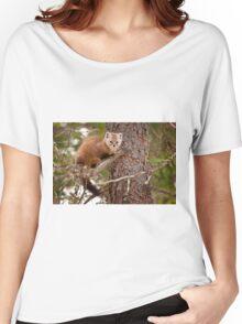 Pine Marten In Pine Tree Women's Relaxed Fit T-Shirt