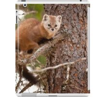 Pine Marten In Pine Tree iPad Case/Skin