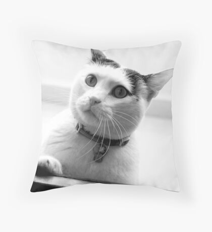 Let me in! Will you? Throw Pillow