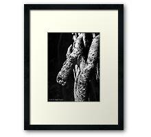 Mr. Banyan Framed Print
