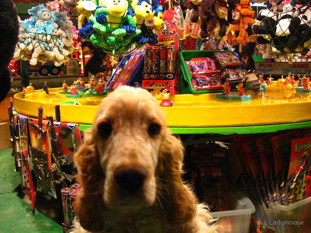 Hook a Pup by Ladymoose