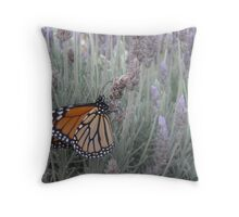 Butterfly in Lavender, Barossa Valley, South Australia Throw Pillow