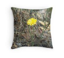 Yellow wildflower, Morialta National Park, South Australia Throw Pillow