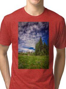 Mt Rainier, Washington Tri-blend T-Shirt