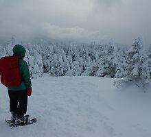 Snowy Reflection on Cascade by SAJONES