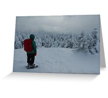 Snowy Reflection on Cascade Greeting Card