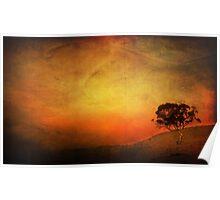 Sunset Textured Tree Landscape Poster