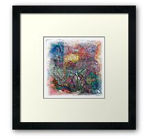 The Atlas Of Dreams - Color Plate 49 Framed Print