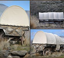 Covered Wagon II by Susan Vinson