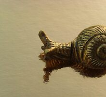Luxury snail by Carol Dumousseau