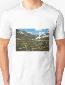 Summer Snow T-Shirt