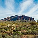 Superstition Mountains by Angela Pritchard