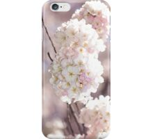 Pink and White Pompoms of Light iPhone Case/Skin