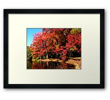 Red Trees by Lake Framed Print