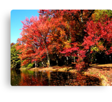 Red Trees by Lake Canvas Print