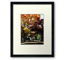 Suburban Autumn Framed Print