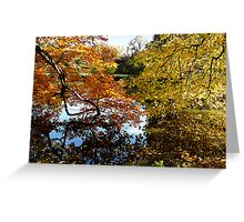 Golden Autumn Trees Greeting Card