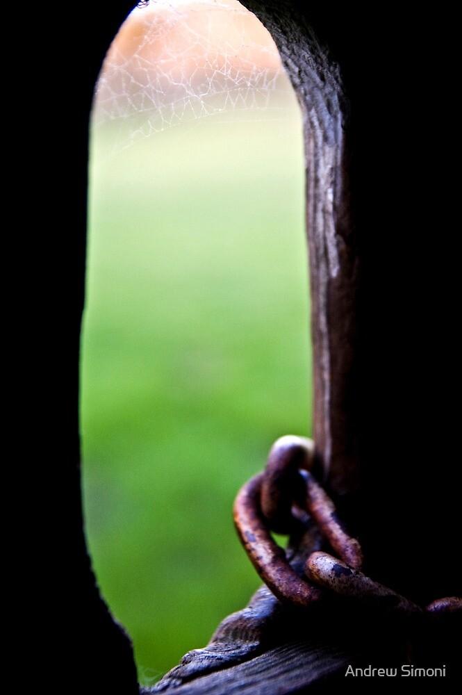 Locked Perspective by Andrew Simoni