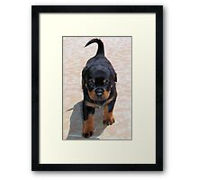 Me and My Rottweiler Shadow Framed Print