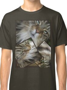 HOW CAN I DESCRIBE THIS BEAUTIFUL CAT Classic T-Shirt