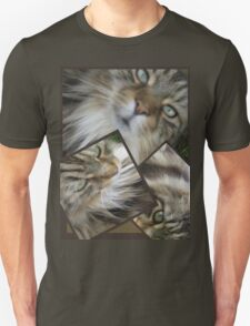 HOW CAN I DESCRIBE THIS BEAUTIFUL CAT T-Shirt