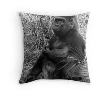 Silver Back Gorilla Throw Pillow