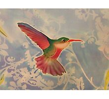 HEMINGWAY'S (Hummingbird, Detail)  by Janai-Ami Photographic Print