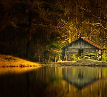 Cabin Fever 2 by Phillip M. Burrow