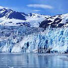 Glacier Bay 2013 by maureenclark