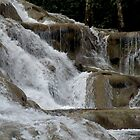Dunn's River Falls Close View by Rosalie Scanlon