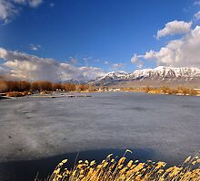 American Fork Boat Harbor Late Winter by Ryan Houston