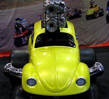 Beetle Overkill by shutterbug2010