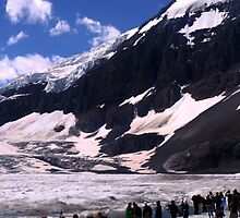Columbian Icefields by Maureen Clark