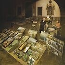 The seller of paintings of The Museum Plaza by elsilencio