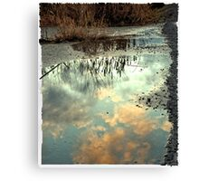 Spring is SOON! Canvas Print