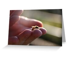 A wasp in the hand Greeting Card