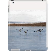Canadian Geese Takeoff iPad Case/Skin