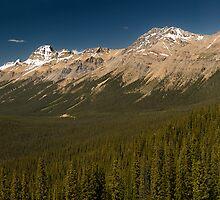 Panoramic view of Peyto lake, Canada by alopezc72