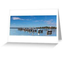 Pelicans on the Pier - Toukley NSW Australia Greeting Card