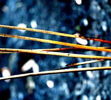 Sticks alive by NaraZ