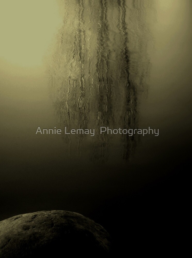 Roche  by Annie Lemay  Photography