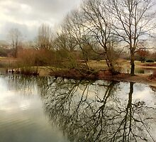 Mitcham Common, London by Ludwig Wagner