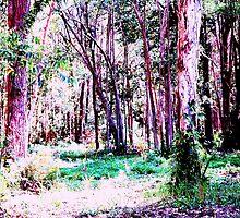 wonderland pink by NaraZ