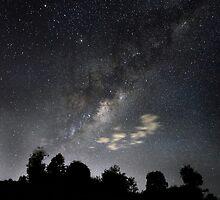 Star Light, Star Bright. by Ann  Van Breemen