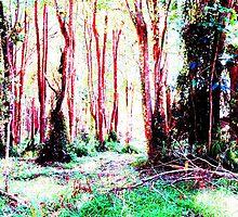 Red trees by NaraZ