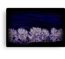Afterglow Horizon Canvas Print