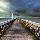 Path Of The Storm by manateevoyager