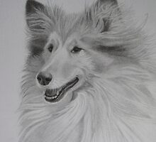 Rough Collie by KarenWoodArt