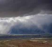 Desert Irrigation System by Robert Whiteman